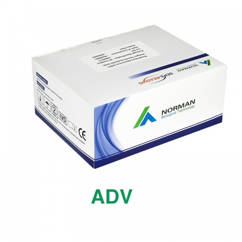 ADV Antigen Test Kit
